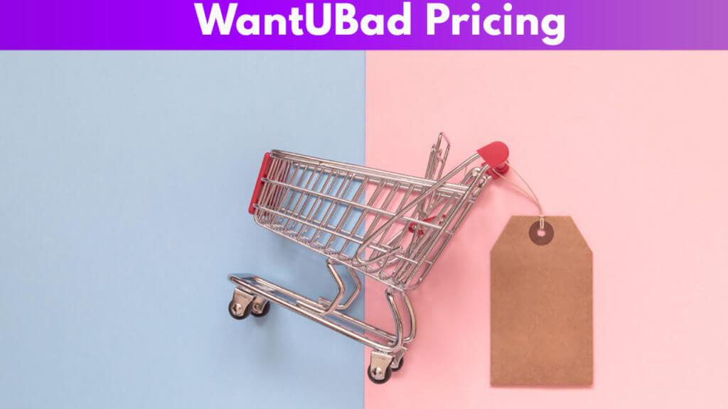 WantUBad Pricing