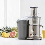 Breville-800JEXL-Juice-Fountain-Elite-1000-Watt-Juice-Extractor-0-0
