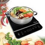 Rosewill-1800W-Induction-Cooker-Cooktop-with-Stainless-Steel-Pot-0-0