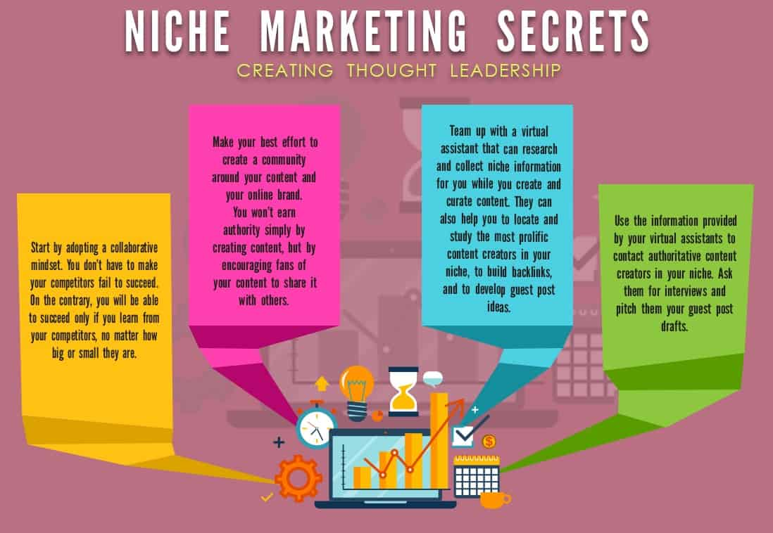 niche marketing secrets_creating thought leadership