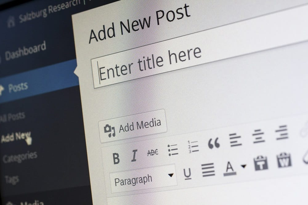 wordpress cms for your first blog post