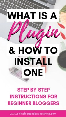 "Text ""What is a plugin and how to install one"""