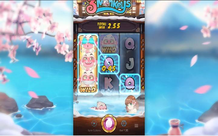 Online Casino Bonus, Balkan Casino, Three Monkeys