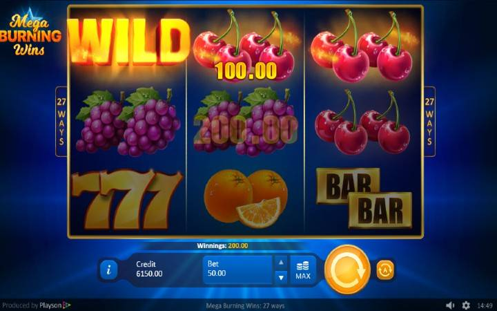 Online Casino Bonus, Mega Burning Wilds
