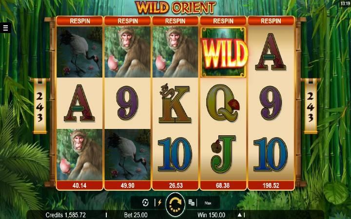 WIld Orient, Online casino bonus