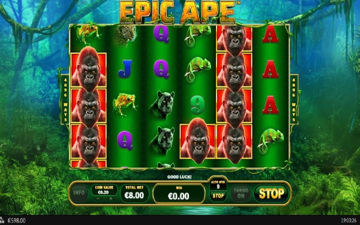 King Kong, Online Casino Bonus, Epic Ape