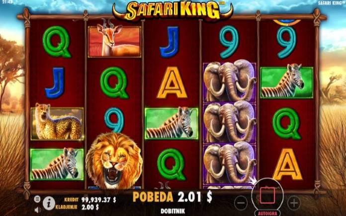 Online Casino Bonus, Safari King