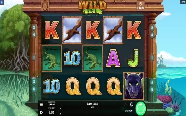 Wild Predators, Online Casino Bonus
