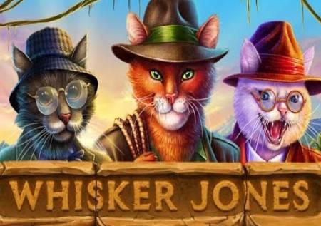 Whisker Jones – brkati Jones sa vrećom bonusa