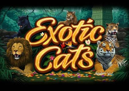 Exotic Cats – divlje mačke donose kazino bonuse