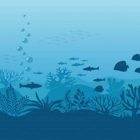 Top 5 morskih slotova