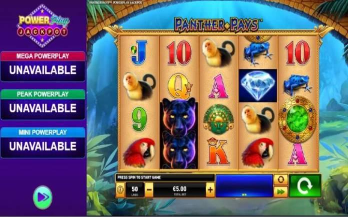 Power Play Panther Pays-online casino bonus-playtech
