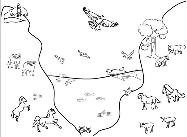 30 Atividades Sobre Animais Terrestres Aquaticos E Aereos Para