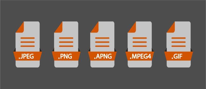 Format of vector media files