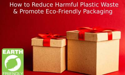 Eco-friendly-packaging-1666070 (1)