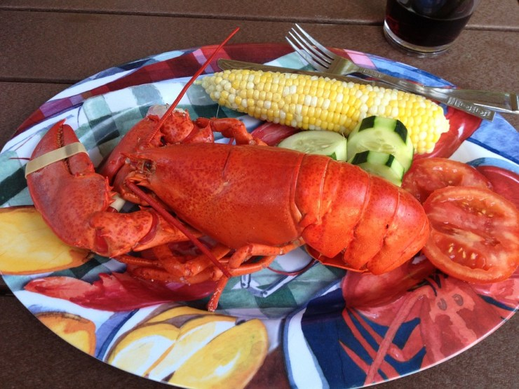 cooked lobster on a plate, served with corn