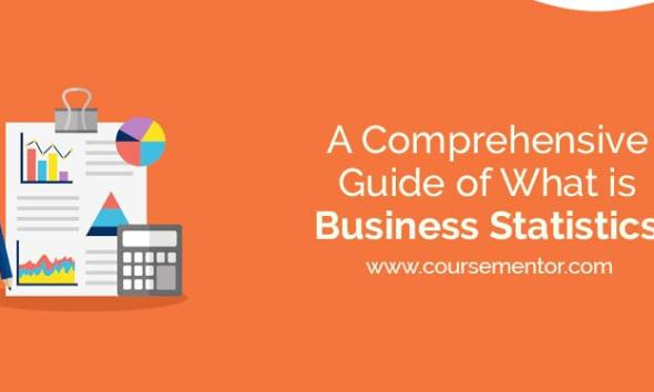 A Comprehensive Guide of What is Business Statistics 14