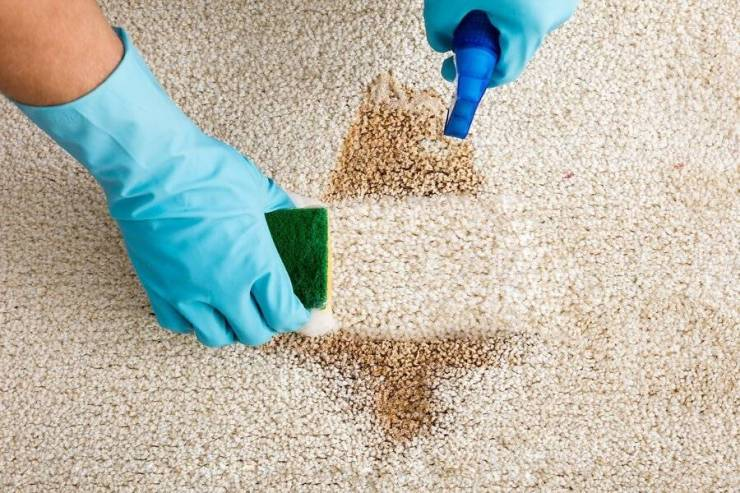 Best Ways for Stain Removal from Carpets 10