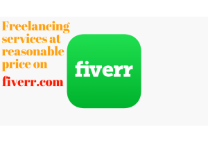 Some common and important freelancing services of Fiverr for its clients