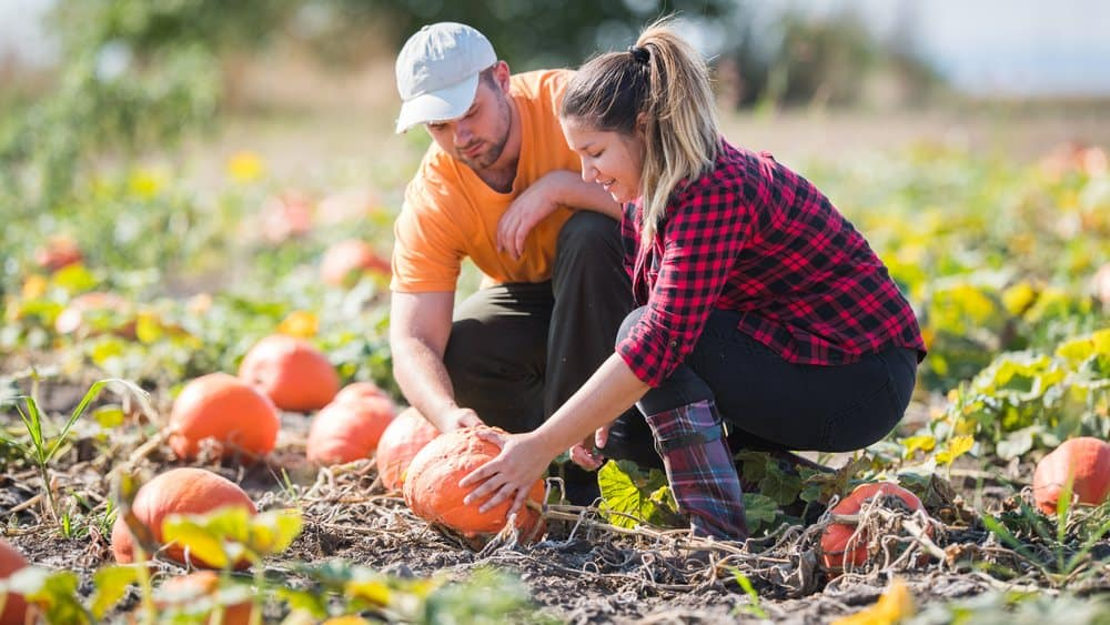 Best Farmers Dating Sites