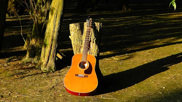 beginner tips and tricks for playing the guitar - Beginner Tips And Tricks For Playing The Guitar