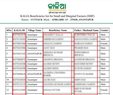 Kalia Scheme 2020