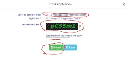 How to check E-Pass Application Status