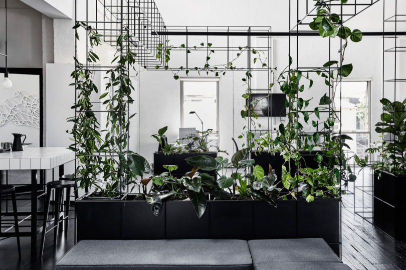 Candlefox Hq A Graphic Black And White Office In Melbourne Online Home Design Blog