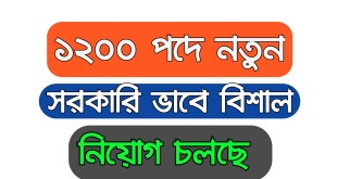 Government Job Circular 2019