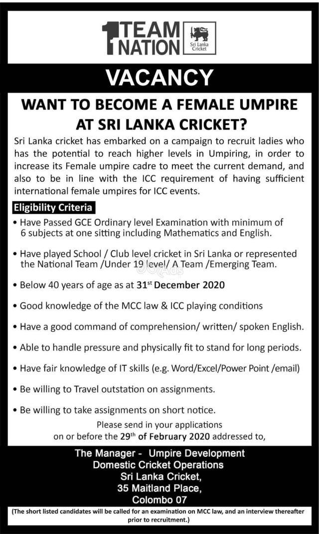 Cricket Umpire (female) - Team Nation Job vacancies 2020