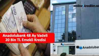 Photo of Anadolubank 60 Ay Vadeli 20 Bin TL Emekli Kredisi
