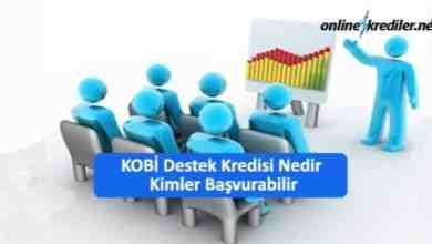 Photo of KOBİ Destek Kredisi Nedir Kimler Başvurabilir