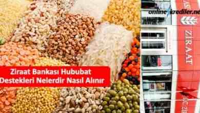 Photo of Ziraat Bankası Hububat Destekleri Nelerdir Nasıl Alınır