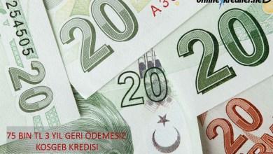 Photo of 75 Bin TL 3 Yıl Geri Ödemesiz KOSGEB Kredisi