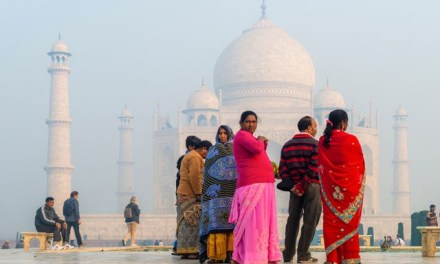 Domestic travel to bailout India's tourism sector