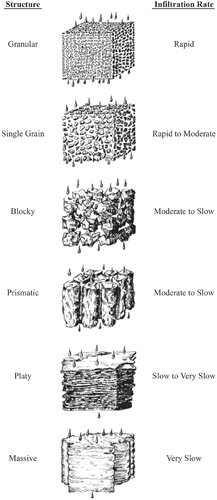 An Introduction to Soil Concepts and the Role of Soils in