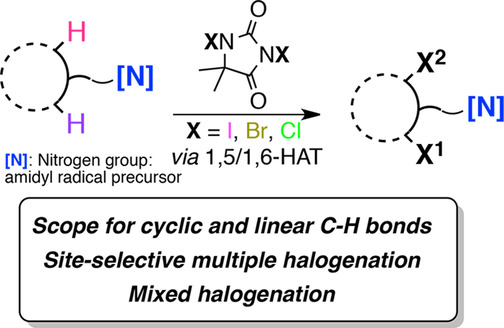 Multiple Halogenation of Aliphatic C−H Bonds within the
