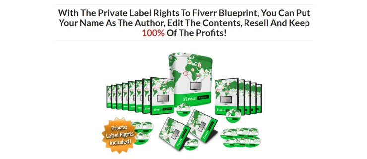 Make-Money-on-Fiverr-Blueprint-PLR-Business-in-a-Box-Package.jpg