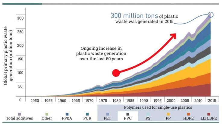 Global plastic waste generation from 1950 to 2015.