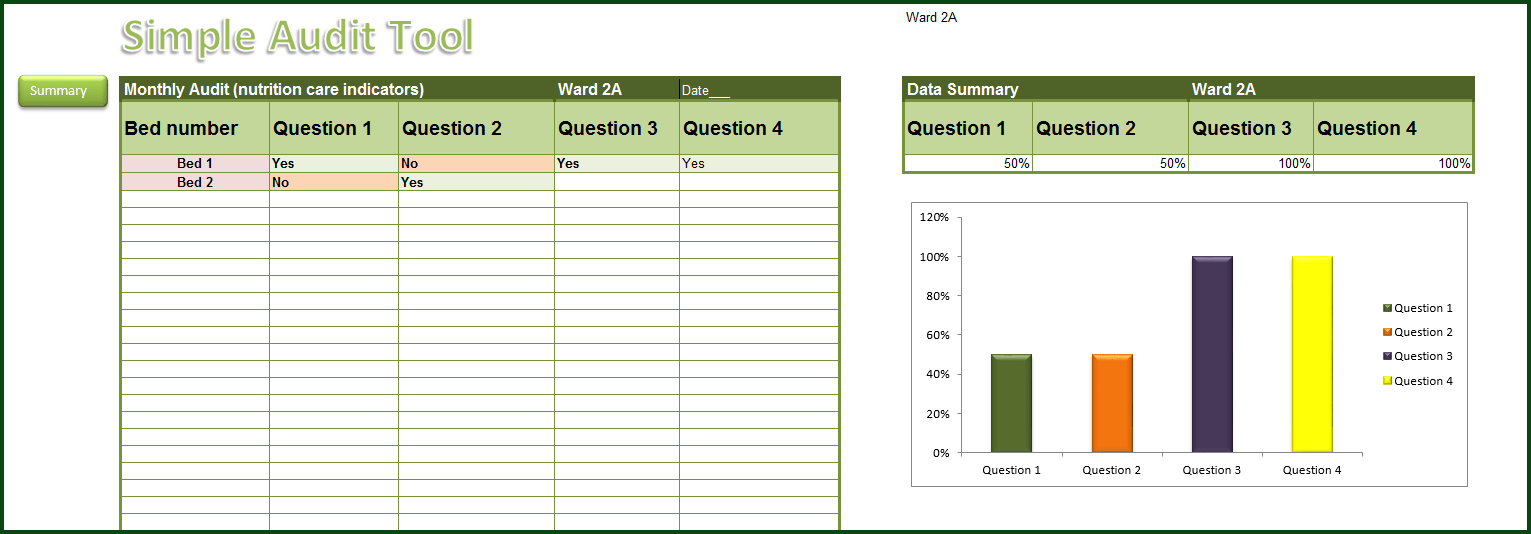 excel audit tool template