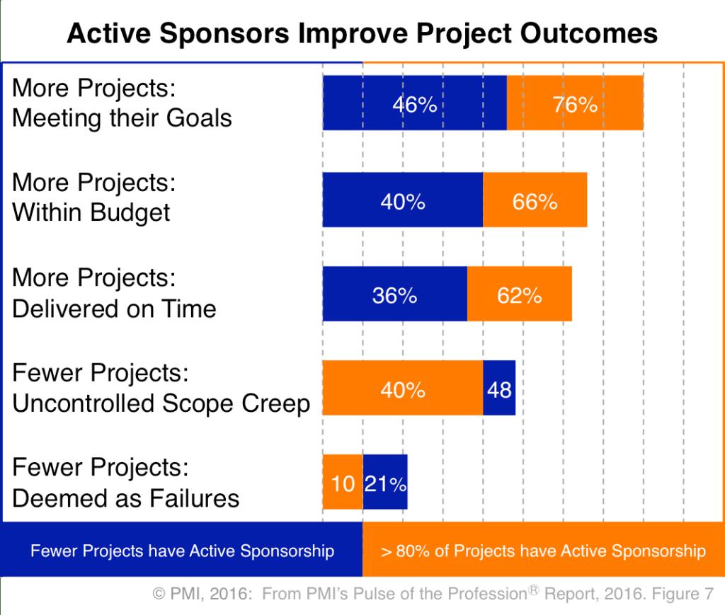 PMI Project Management - Active Sponsors