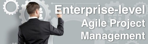 Enterprise-level Agile Project Management