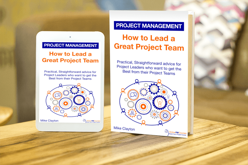 How to Lead a Great Project Team - Kindle