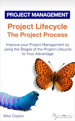 Project Lifecycle: The Project Process