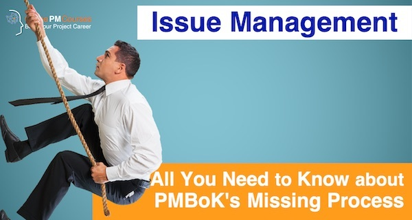 Issue Management - All You Need to Know about PMBoK's Missing Process