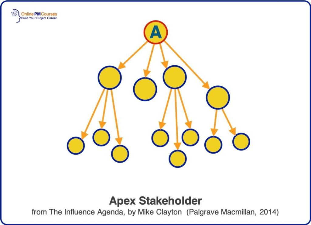 Stakeholder Leadership - Apex Stakeholder