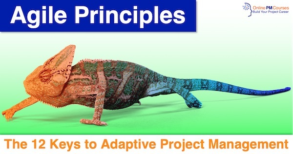 Agile Principles: The 12 Keys to Adaptive Project Management