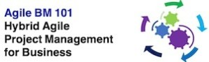 Agile BM101 - Hybrid Agile PM for Business 300