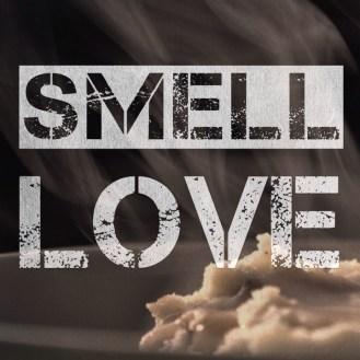 Social Media Valentines Campaign