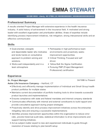 Your project manager cv resume summary should adopt a tone of proficiency and confidence. 20 Best Sr Project Manager Resumes Resumehelp